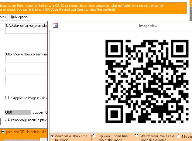 Click the image for a view of: View QR Codes associated with an item